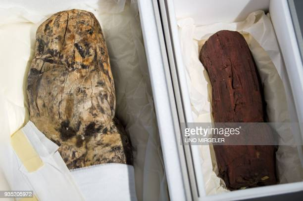Two Olmec finds in protective boxes are seen during a press conference of the Archaeological State Collection in Munich southern Germany on march 20...