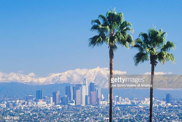 Two palm trees, Los Angeles and snowy Mount Baldy as seen from the Baldwin Hills, Los Angeles, California