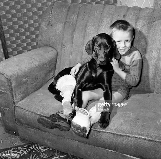 Two pals in the same fix Barry Blackwood aged 5 of Woolston Southampton and his sixmonthold Labrador pet Rocky Rocky broke his leg on his way to meet...