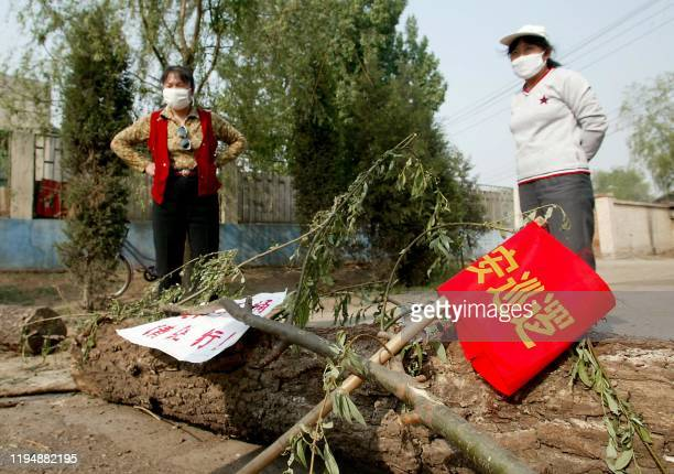 Two peasant women wearing masks man a barricade with a sawnoff tree blocking the road into their village that located near the hospital erected...