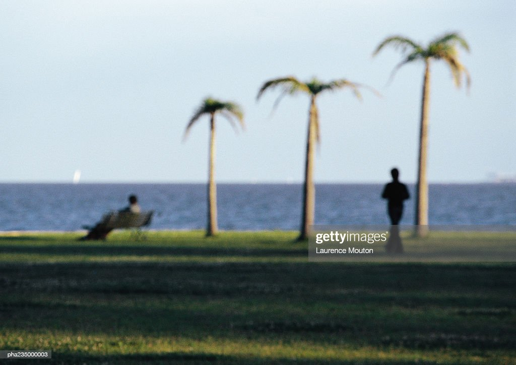 Two people and three palm trees by water, blurred. : Stockfoto