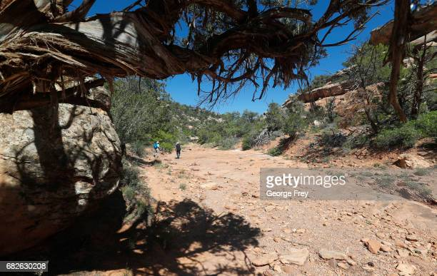 BLANDING UT MAY 12 Two people hike up the South Fork of Mule Canyon in the Bears Ears National Monument on May 12 2017 outside Blanding Utah The...