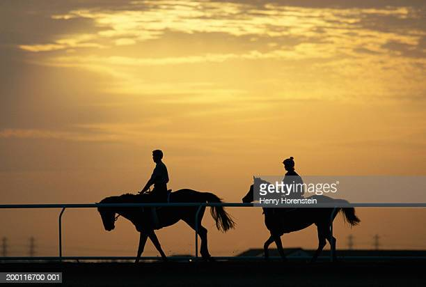 two people horseback riding at sunset, silhouette, side view - racehorse stock pictures, royalty-free photos & images