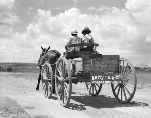 Two People Riding in Horse-Drawn Cart on Rural Dirt Road, Rear View, Mississippi, USA, Dorothea Lange, Farm Security Administration.