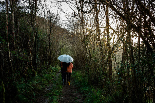 two people taking a walk with umbrellas along a country road