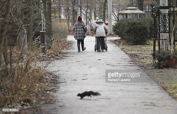TORONTO ON JANUARY 21 Two people walk through Ward's Island enjoying the peace and quiet A liquor licence application would see the space owned by...