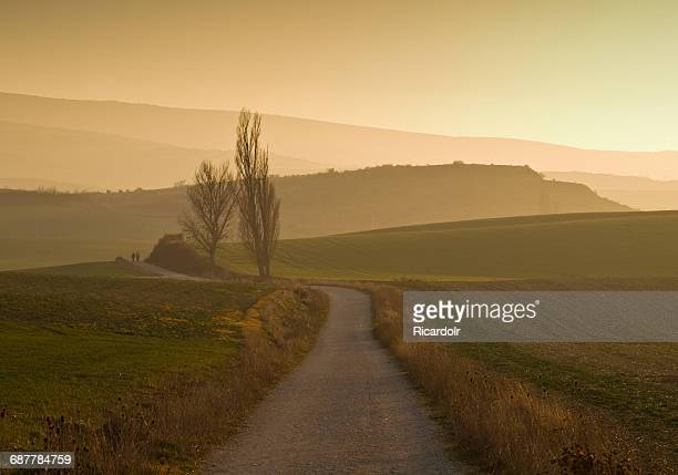 two people walking along camino de santiago at sunset, spain - cammino di santiago di compostella foto e immagini stock
