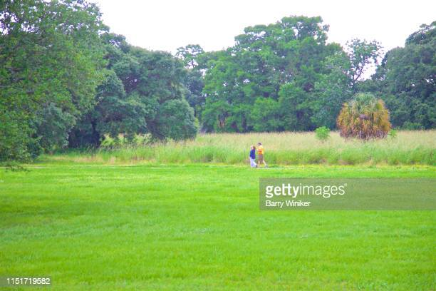 two people walking in city park, new orleans - new orleans city park stock pictures, royalty-free photos & images