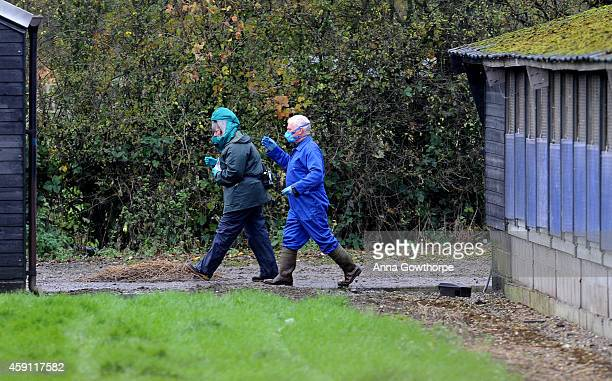 Two people wearing masks walk between the duck sheds on a farm near Nafferton East Yorkshire where a strain of bird flu has been confirmed on...