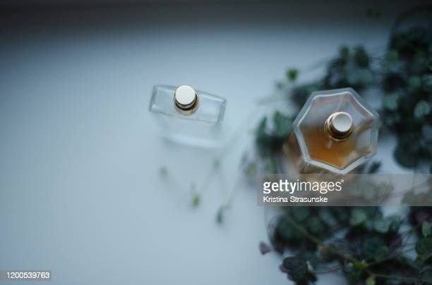 two perfume bottles by a green plant - kristina strasunske stock pictures, royalty-free photos & images