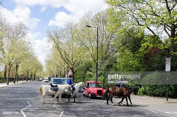 Zwei Personen Reiten Pferd Überqueren der Straße