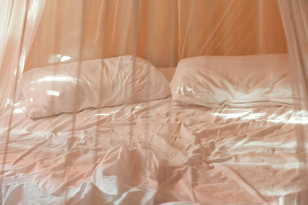 Two Pillows And Empty Bed With Netting Wall Art