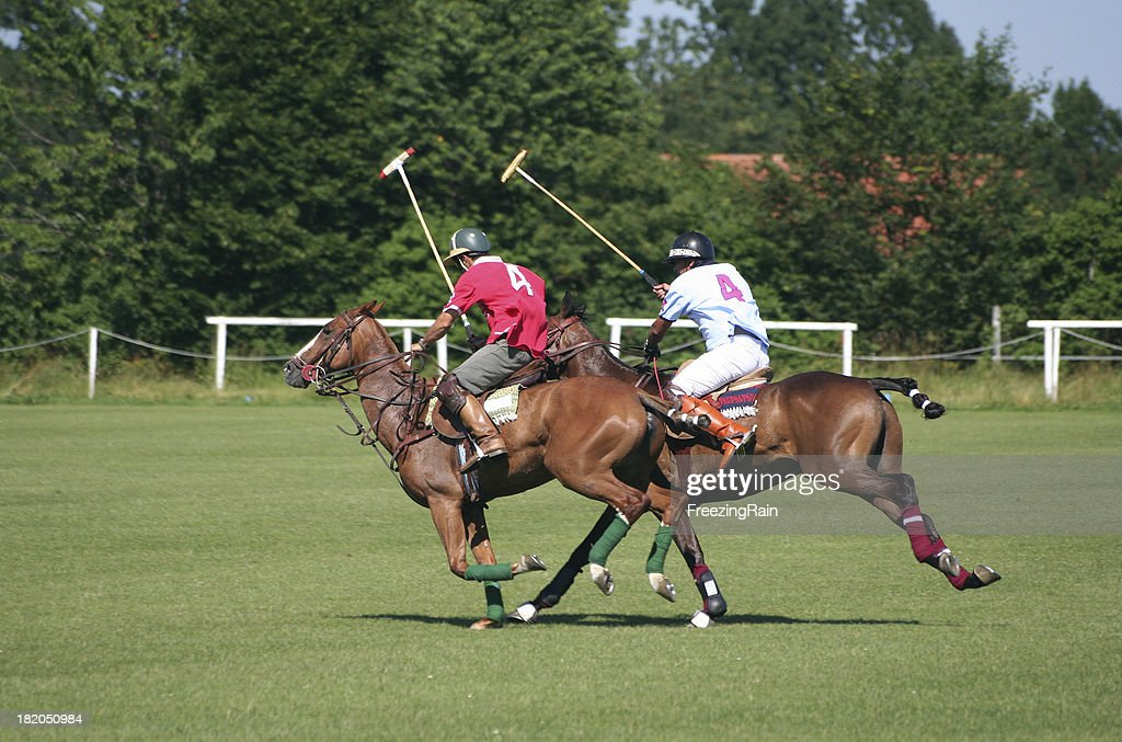Two polo player : Stock Photo