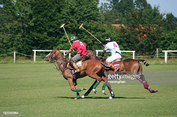 Two polo player
