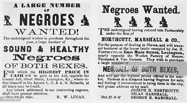 Two posters advertising slave trading businesses both posters claim they will pay the highest market prices for slaves brought to their holding...