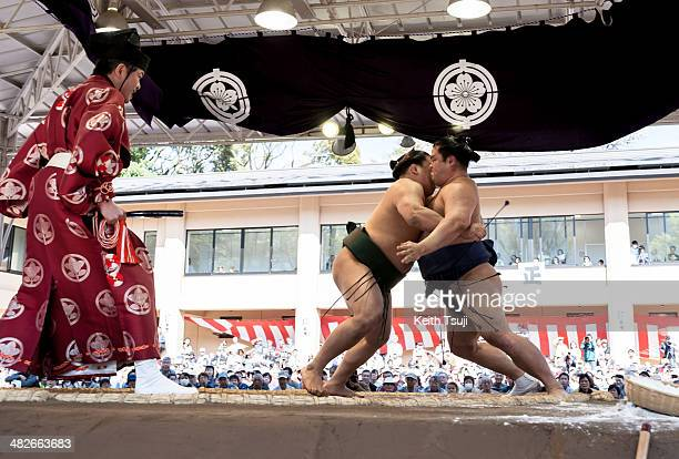 Two professional sumo wrestlers compete with each other during the Ceremonial Sumo Tournament or Honozumo at the Yasukuni Shrine on April 4 2014 in...