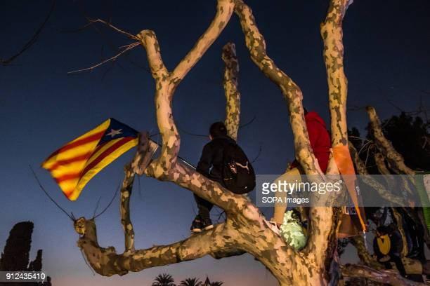 Two proindependence youths with a flag seen sitting on a tree at the gates of the Parliament of Catalonia Given the rulings of the Spanish courts the...