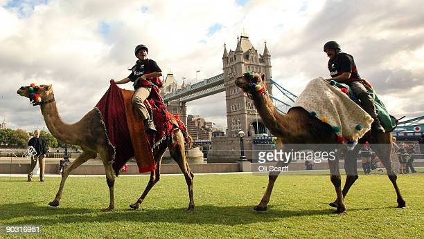 Two racing camels compete in front of Tower Bridge on September 3, 2009 in London, England. The camels are the new mascots of Saracens Rugby Club and...