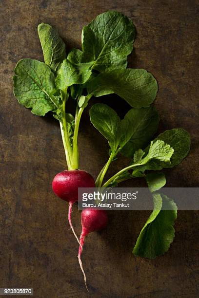 Two Radishes Holding Each Other