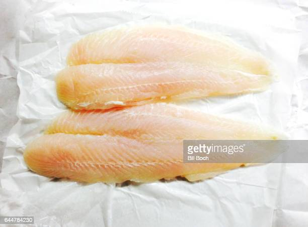 Two raw fillets of sole on white fish market paper