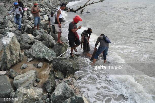 Two residents tried to push the sunfish that were stranded alive in Talise Beach, Besusu Village, Palu City, Central Sulawesi Province on Wednesday,...