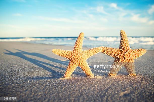 Dos manos de retención en estrella romántica puesta de sol Tropical playa