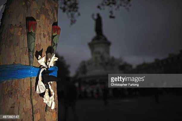 Two roses are attached to a tree near to Place de la Republique as a mark of respect to the victims of the Paris terror attacks last Friday on...