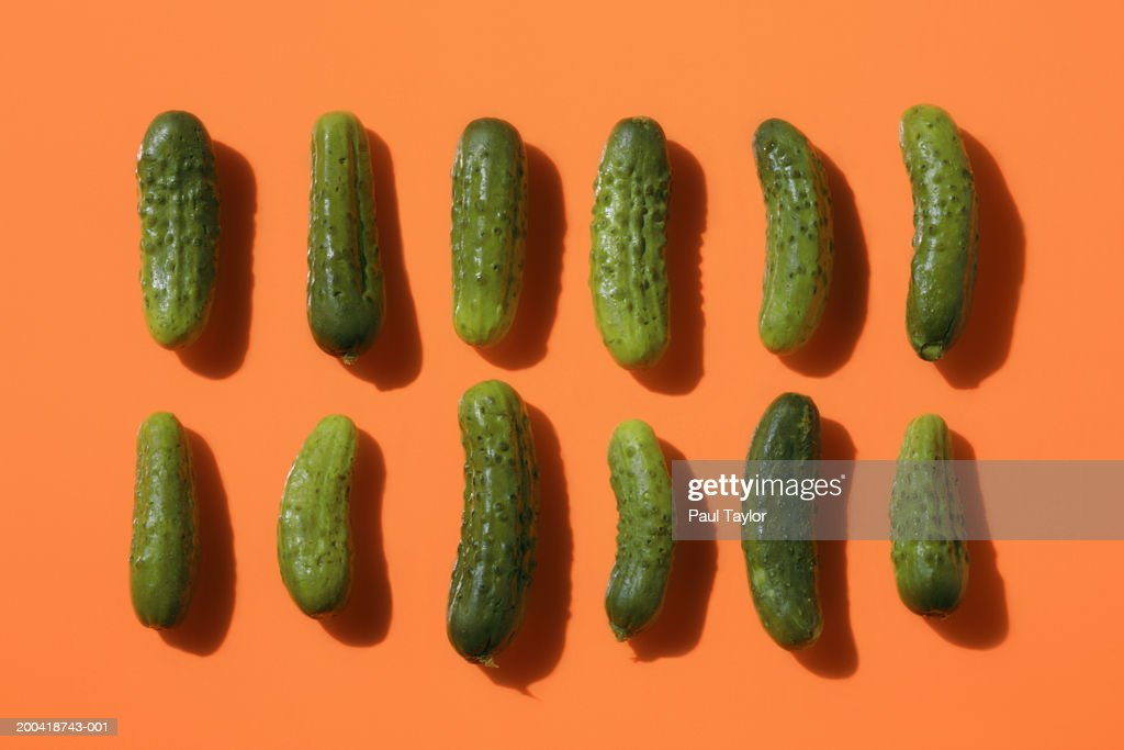 Two rows of pickles : Stock Photo