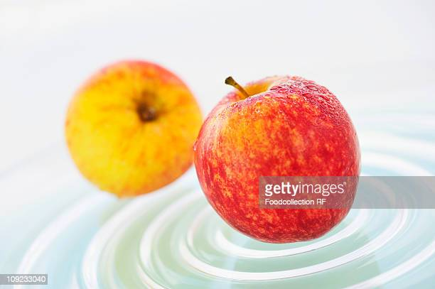 two royal gala apples on plate - royal gala apple stock photos and pictures