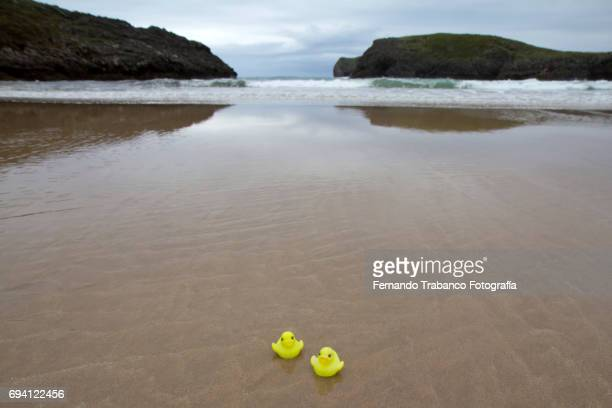 Two rubber ducklings together on a lonely beach