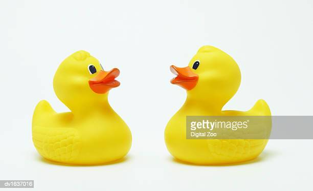 Two Rubber Ducks, Face-to-Face Studio Shot