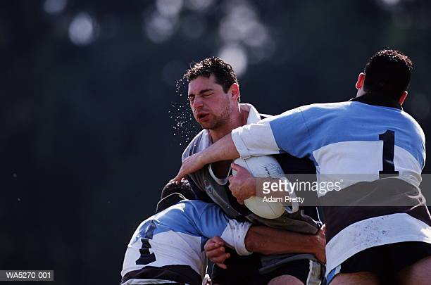 two rugby players tackling opponent with ball - tackling stock pictures, royalty-free photos & images
