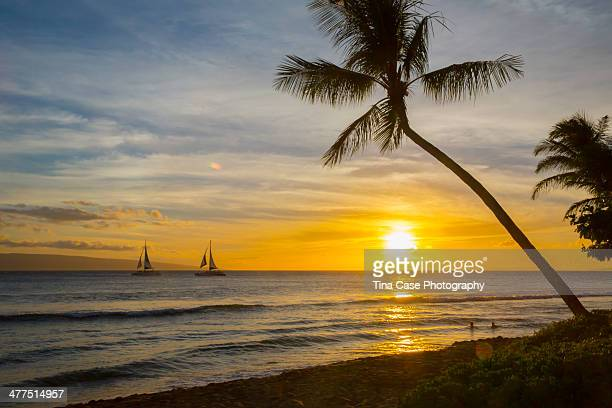 Two Sailboats Passing through the night, Laihaina