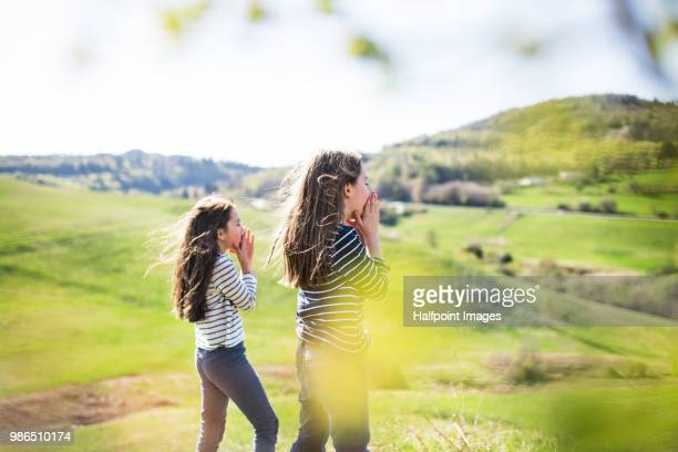 Two school girls standing on a meadow in spring nature.