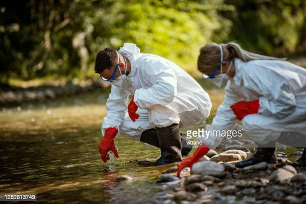 two scientists exploring water in river - ecologist stock pictures, royalty-free photos & images
