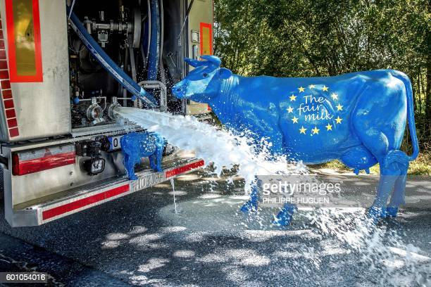 Two sculptures of cow bearing the color of the European flag with an inscription reading 'The fair milk' are pictured next to a milk truck from the...