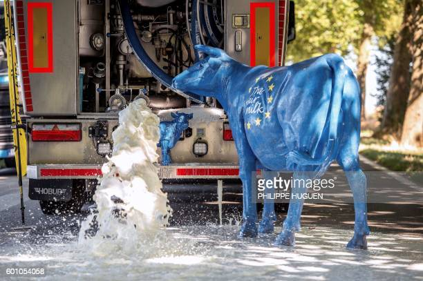 TOPSHOT Two sculptures of cow bearing the color of the European flag with an inscription reading 'The fair milk' are pictured next to a milk truck...