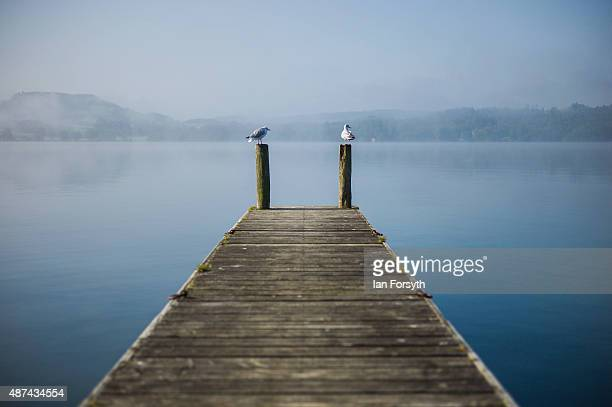 Two seabirds perch on the end of a jetty on the shore of Lake Windermere on September 08, 2015 in Windermere, England. Lake Windermere is the largest...