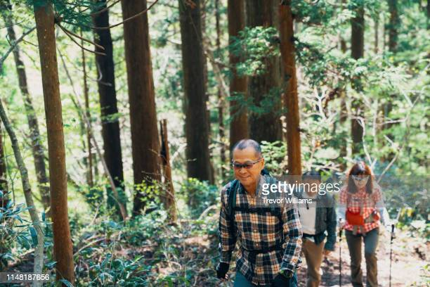 two senior men and a mature women hiking together in a forest - disruptaging stock photos and pictures