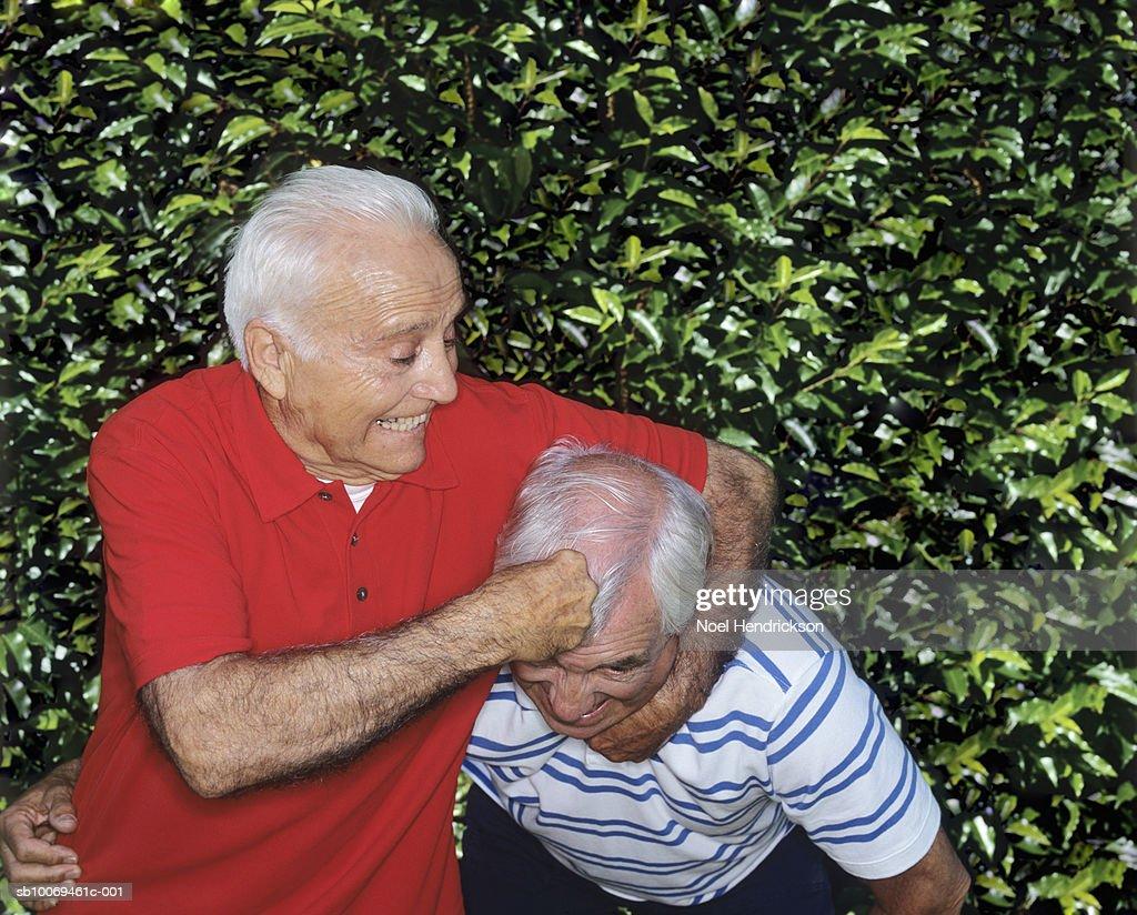 Two senior men rough housing by hedge : Stock Photo