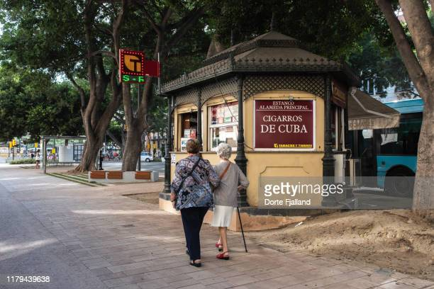 two senior women walking on the alameda, málaga under large shady trees - dorte fjalland stock pictures, royalty-free photos & images
