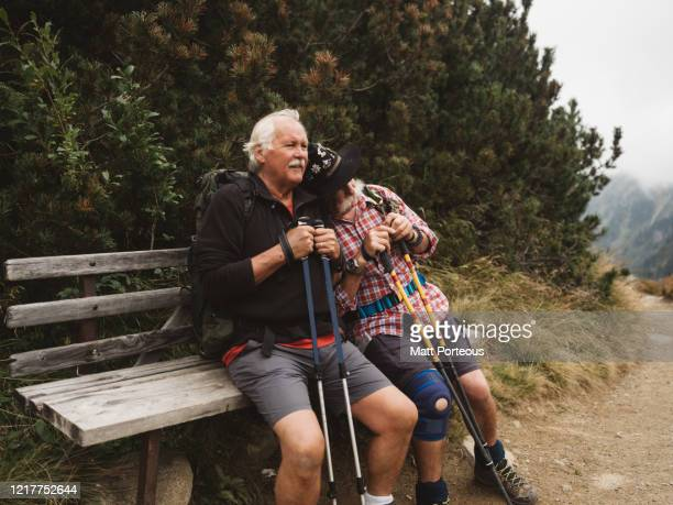 two seniors take a rest on bench - austria stock pictures, royalty-free photos & images