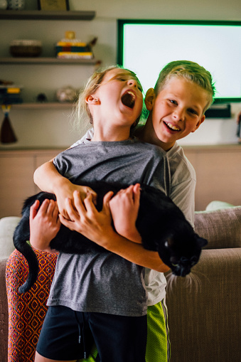 Two Siblings Rough Housing while Holding a Domestic Cat - gettyimageskorea
