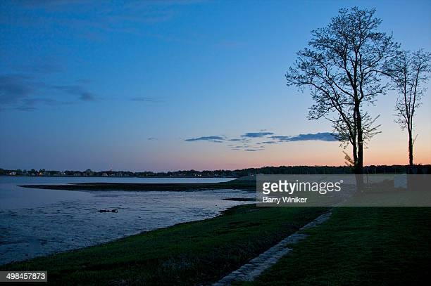 two silhouetted trees on shoreline at dusk - westport connecticut stock photos and pictures