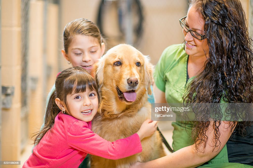 Two Sisters Adopting a Dog : Stock Photo