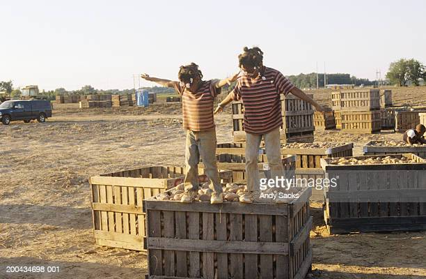 Two sisters balancing on sweet potato bin in field, on farm