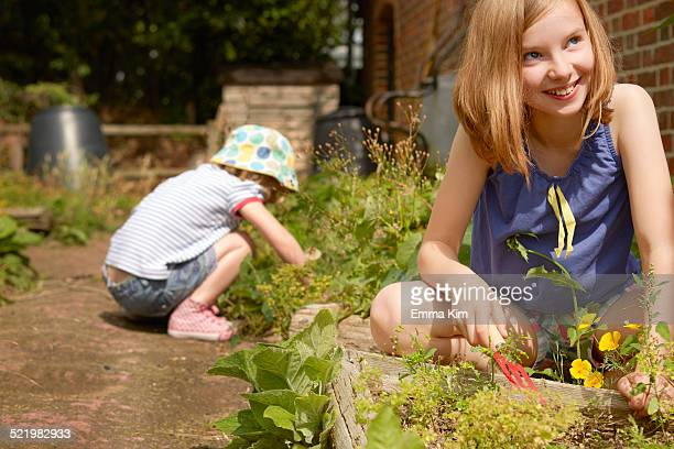 two sisters digging in garden - borough of lewisham stock pictures, royalty-free photos & images
