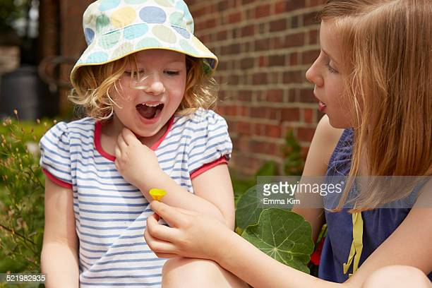 two sisters in garden with buttercup flower - borough of lewisham stock pictures, royalty-free photos & images