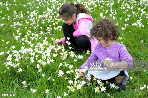 Two sisters picking flowers