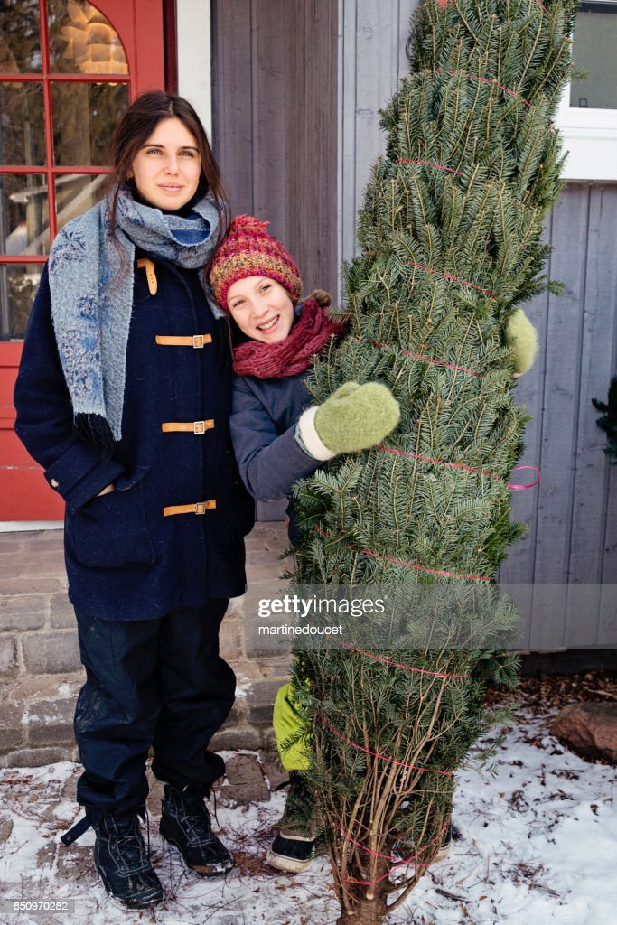 Two sisters with freshly cut Christmas tree in front of house outdoors. : Stock Photo